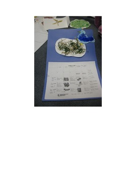 "The ""B"" says ""buh"": Beautiful Bluebird Craft/Template/Lesson Plan/Activities"