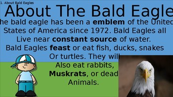 The Bald Eagle: A study about America