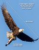 Informational Text {Bald Eagle} Close Reading & Text Depen