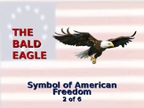 The Bald Eagle - Symbol of American Freedom
