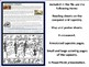 The Bayeux Tapestry & Norman Conquest