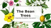 The Bean Trees Important Quotation Discussion Guide
