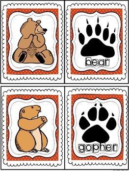 The Bear Bundle