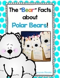 "The ""Bear"" Facts About Polar Bears"