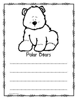 "The ""Bear"" Facts About Polar Bears"