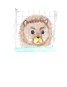 The Beaver Build a Habitat