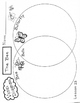 The Bee  2nd Grade  Harcourt Storytown Lesson 23