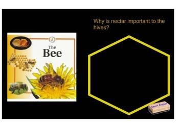 The Bee SmartBoard Comprehension file