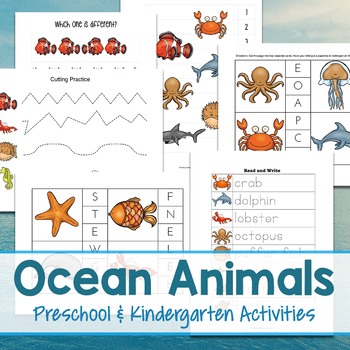 The Best Ocean Animals Preschool Fun