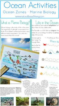 The Best Ocean Activities - Marine Biology Unit Study for Kids