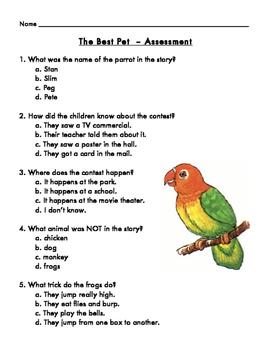 The Best Pet Assessment