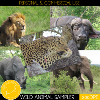 The Big 5 - Wild Animal Photos Sampler