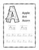 The Big ABC Tracing Book- Printables