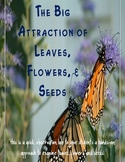 The Big Attraction of Leaves, Flowers, and Seeds