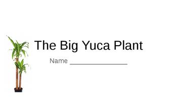 The Big Yuca Plant
