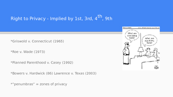 The Bill of Rights: The Fourth Amendment and the Right to Privacy