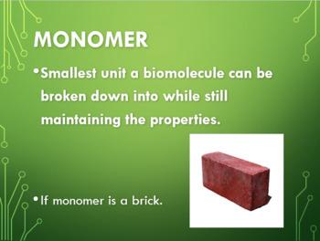 The Biochemistry of Biomolecules Power Point Presentation