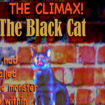 The Black Cat The Climax poster