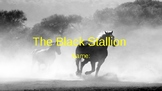 The Black Stallion Student Vocab Slides