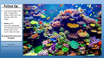 The Bleaching of Coral Lesson Plan
