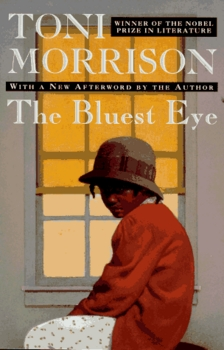 The Bluest Eye Day to Day Lesson Plan (3 Weeks)