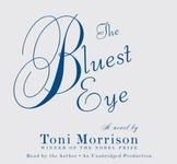 The Bluest Eye Unit Activity Bundle