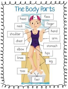 The Body Parts ESL Vocabulary!