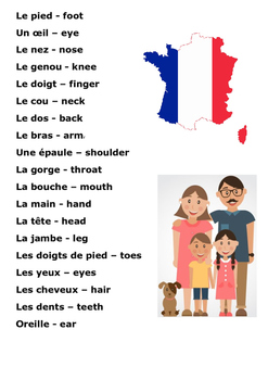 The Body Parts - French Word Search
