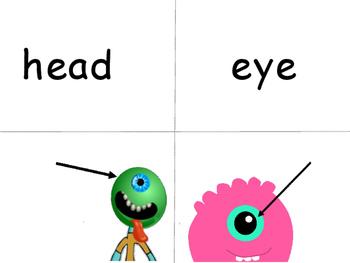 The Body – Vocabulary Word Wall ESL Body Vocabulary