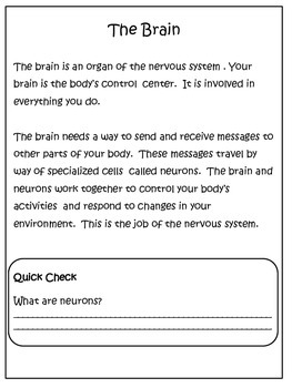 Science: The Brain