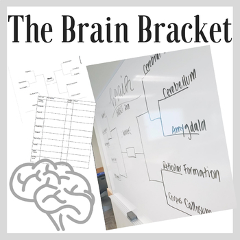 The Brain Bracket: Brain Parts & Functions Activity (Editable)