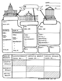 The Branches of Government Graphic Organizer