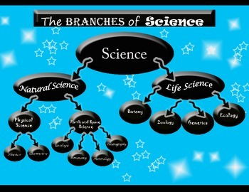 The Branches of Science