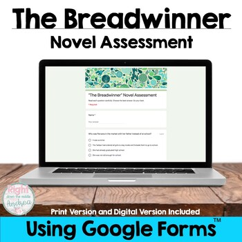 The Breadwinner {Novel Test}
