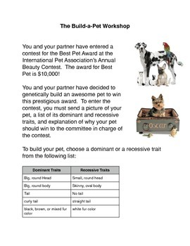 The Build A Pet Activity