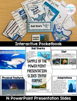 The Bull Shark Research Unit with PowerPoint