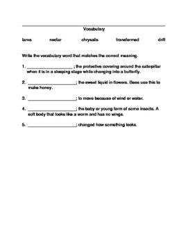 The Butterfly House Vocabulary and Comprehension Worksheet