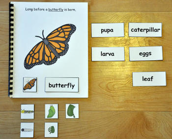 The Butterfly Life Cycle Adapted Book