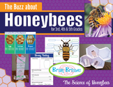 The Buzz About Honeybees   Bee Biology Science NGSS & Literacy 3, 4, 5 grades
