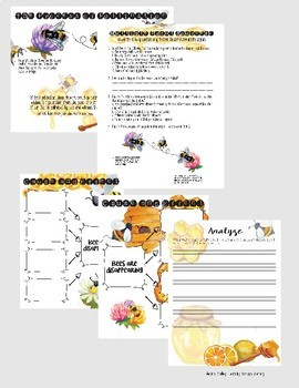 The Buzz on Bees - Reading Lesson & Activities