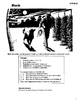 The Call of the Wild 10 Chapter Novel, Student Activities, Answer Keys