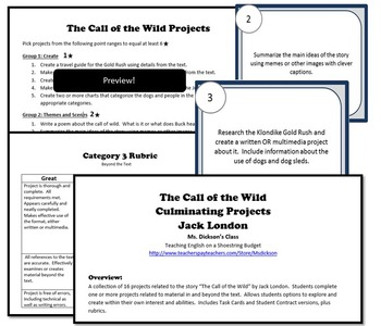 The Call of the Wild Activity Bundle (Jack London) PDF