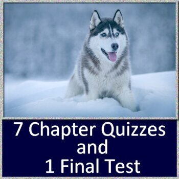Call of the Wild Novel Study Quiz and Test Bundle