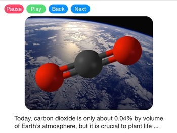 The Carbon Cycle (Video)