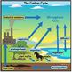 Carbon Cycle Clip Art