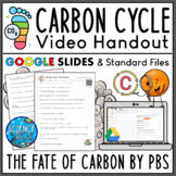 The Carbon Cycle Documentary Video Worksheet