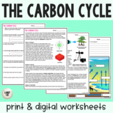 The Carbon Cycle - Guided Practice - Print & Google Versions