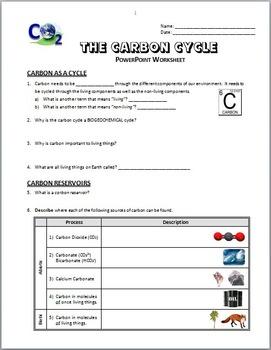 The Carbon Cycle - LESSON BUNDLE {Editable}