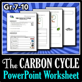 The Carbon Cycle - PowerPoint Worksheet {Editable}