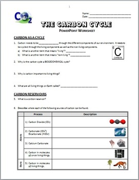 The Carbon Cycle Powerpoint Worksheet By Tangstar Science